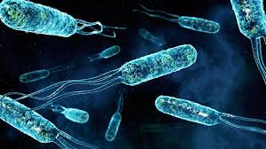 Страшилище за суперинфекции