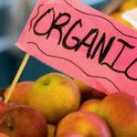 ЕС въвежда нови правила за внос на органични продукти