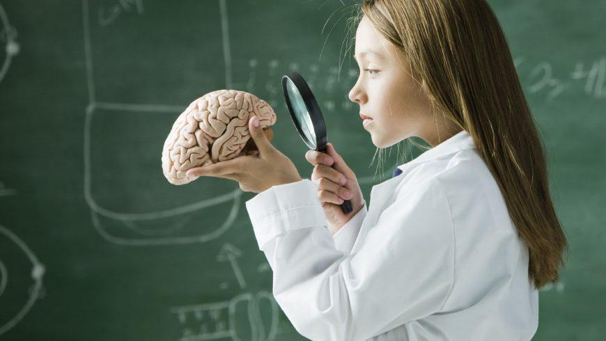 Наливат знания  директно в мозъка