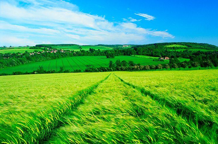 """НАЗ организира семинар на тема """"Земеделие за бъдещето"""""""
