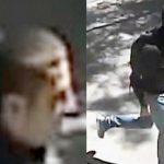 Aрестувани са двама братя за убийството в Борисовата градина