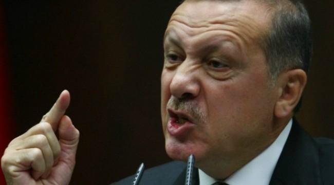 Ердоган призова турците в Европа да имат по 5 деца