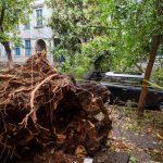 200 000 румънци без ток заради бурята