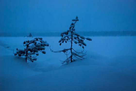 Част от Финландия остана без ток заради снеговалежите
