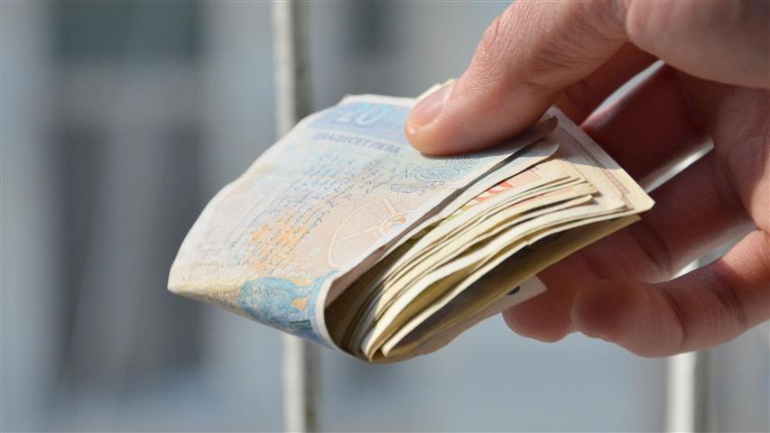 Галъп: Българите са доволни от работата, заплащането и шефовете си