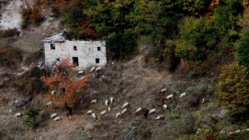 Населението на България намаляло с 50 000 за година