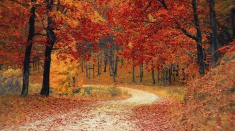 В 04.54 часа започна астрономическата есен