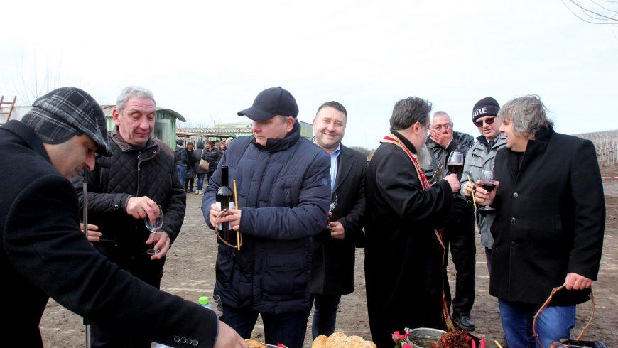 """С празнични ритуали """"Винпром Свищов"""" чества Трифон Зарезан"""