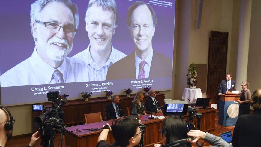 Отличиха нобеловите лауреати в медицината