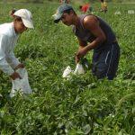 Българският работник има вяра само на социалния работник