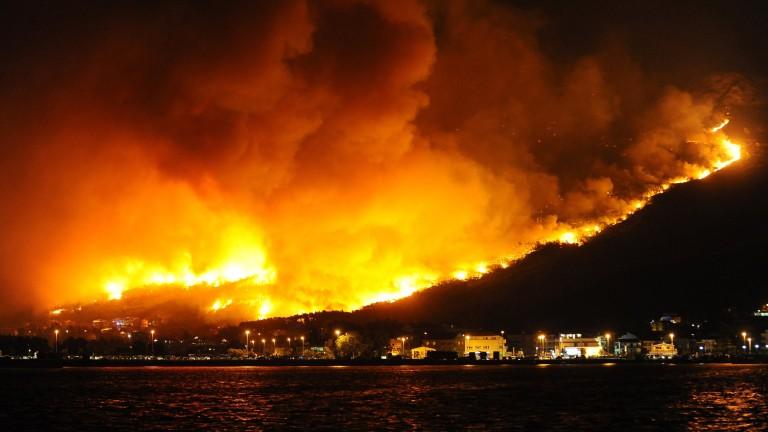 Огненият ад в Гърция взе 79 жертви, 2000 са опожарените къщи