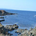Граждански организации искат Радев да наложи вето върху Закона за Черноморието