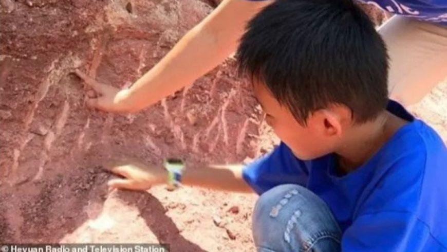 Момче открива динозавърски яйца на 66 милиона години в Китай
