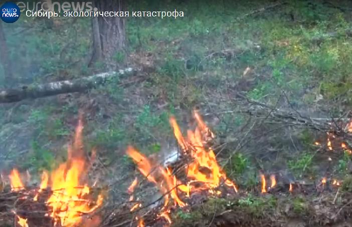 Пожарът в Сибир обхвана 3 милиона хектара